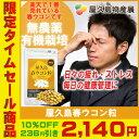 バルサ 優勝 セール 【 236円OFF 】屋久島 春ウコン...