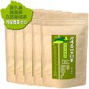 """《 私たちが作った""""無農薬屋久島二番茶粉末緑茶""""です 》屋久島自然栽培茶「徳用パウダーティー」160g×5/送料無料"""