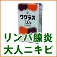 【第2類医薬品】できものの薬 ワグラスD錠 300錠 ホノミ漢方【RCP】