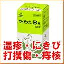 【第2類医薬品】皮膚病のお薬 ワグラスB錠 300錠 ホノミ漢方【RCP】