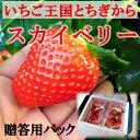 栃木県産いちごスカイベリー 1箱約300...