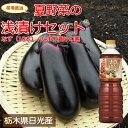 栃木の新鮮野菜浅漬けセットなす10本+たまり漬けの素採れたて栃木の野菜を限定販売