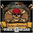 ショッピングMAGICIAN 【ポイント10倍!】【CD】 HAN-KUN / VOICE MAGICIANII〜SOUND of the CARIBBEAN〜