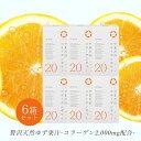 送料無料★コラーゲンゼリーゆず味120本★20本×6箱セット...