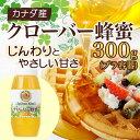 【山田養蜂場】クローバー蜂蜜(カナダ産) 300gプラ容器 ギフト プレゼント 食べ物 食品 はちみつ 健康 人気 プレゼント