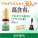 【山田養蜂場】【送料無料】プロポリス液30(ブラジル産) 30mL入