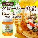 【山田養蜂場】クローバー蜂蜜(カナダ産) 1kgビン入 ギフト プレゼント 食べ物 食品 はちみつ 健康 人気 プレゼント