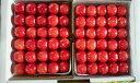 さくらんぼ 佐藤錦 山形県産 贈答用 自家農園栽培 2Lサイズ 500g×2パック 予約商品