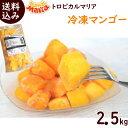 冷凍フルーツ 業務用 冷凍マンゴー 送料無料 【 冷凍マンゴ...
