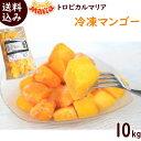 冷凍フルーツ 業務用 冷凍マンゴー 送料無料 【冷凍マンゴー...