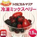 【送料無料】冷凍ミックスベリー1.5kg (500g×3袋)トロピカルマリア 冷凍 ミックスベリー ジュース スムージー ヨナナス