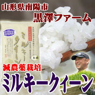 Not trial Pack's discount and convenience stores postpay available Milky Kurosawa farm Quinn 450 g (approximately 3 If )