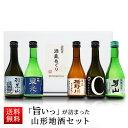 日本酒 飲み比べセット 300ml×5本セット 山形 地酒 辛口 送料無料 父の日 ギフト プレゼント