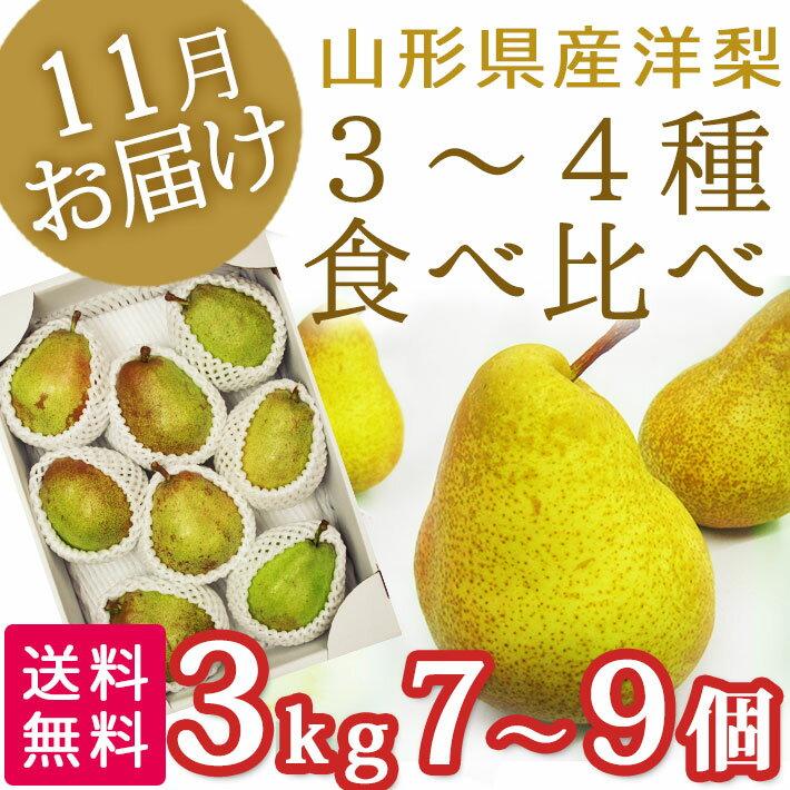 11月、12月お届け洋梨 西洋梨 3-4種類 食べ比べセット 3kg(7-9玉前後) 山形県産 送料無料 【生産者直送のため同梱不可】