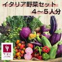 山形県かほくイタリア野菜ファミリーセット5〜6種類入り【送料...