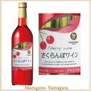 高畠ワイン 高畠ワイン さくらんぼワイン 720ml 高畠ワイン 高畠ワイナリー クリスマス ワイン