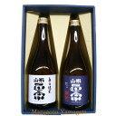 日本酒 飲み比べセット 山形正宗 辛口純米 & 純米吟醸雄町 720ml 2本セット 化粧箱入