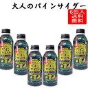 大人のパインサイダー 380ml 6缶セット 山形県 金龍