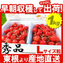 Cherry-1kg