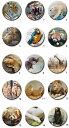 【山口県】【周南市】徳山動物園 缶バッジ(45mmサイズ)(10001444)
