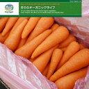 【山口県】【美祢市】【きららオーガニック・ライフ】 有機野菜 にんじん 10kg混合(業務用)