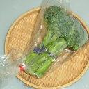 山口県産『ブロッコリー』【野菜詰め合わせセットと同梱で送料無料】