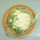 福岡県産『カリフラワー』【野菜詰め合わせセットと同梱で送料無料】