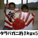 【送料無料】生タラバガニ5Lサイズ 約4kg (約1kgx4肩)[冷凍](かに・カニ)