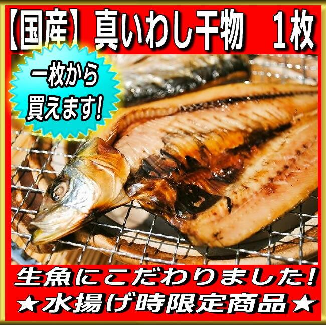 【国産】真イワシ干物 1枚 真イワシってしみじみ美味いです!