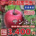 【送料無料】青森県産 サンふじ 訳あり 10Kg(約10キロ)  晩生種りんご 食品 果物 フルーツ