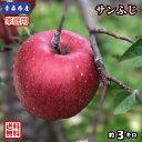 【送料無料】お試し品! 青森県産 サンふじ 家庭用 3Kg(約3キロ)  晩生種りんご 食品 果物