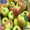【送料無料】青森県産 名月 家庭用 5Kg(約5キロ)  中生種りんご 食品 果物 フルーツ お取り