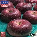 【送料無料】数量限定!青森県産 千雪(ちゆき) 家庭用 5kg(約5キロ)  中生種りんご 食品 果物 フルーツ お取り寄せグルメ
