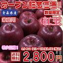 【送料無料】数量限定!青森県産 紅玉 家庭用 4.5kg(約4.5キロ)  中生種りんご 食品 果物 フルーツ お取り寄せグルメ