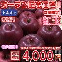 【送料無料】数量限定!青森県産 紅玉 家庭用 9.5kg(約9.5キロ)  中生種りんご 食品 果物 フルーツ お取り寄せグルメ
