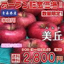 【送料無料】数量限定!青森県産 美丘 家庭用 5kg(約5キロ)  晩生種りんご 食品 果物 フルーツ お取り寄せグルメ
