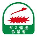 TOYO ヘルメット用シール NO.68-034