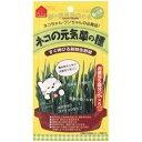 ヤマヒサ ペティオ ネコの元気草の種 15g×5包入