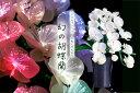 グランドルミナス 胡蝶蘭 3本立 幻の胡蝶蘭 LED r3833 花 供花 造花 生け花フラワーライト モダン仏壇に