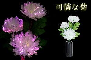 ミニ ルミナス白菊の舞 ★ 可憐な菊単品 ★ LED お盆提