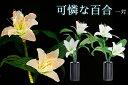 ミニ ルミナス リリー 可憐な百合 一対 LED r3816p 花 供花 造花 生け花フラワーライト モダン仏壇に