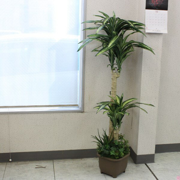CT触媒加工のドラセナツリー150【西濃便】r【楽ギフ_包装】【造花】 【送料無料】インテリアグリーン・現代の進化した人工観葉植物