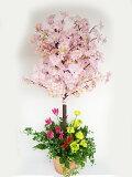 【CT触媒】菜の花とチューリップで飾った桜の鉢植え【西濃便】【シルクフラワー】【楽ギフ包装】【造花】【RCP】