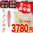 もち米 送料無料 30年産新米 ヒメノモチ 10kg(5kg×2) ひめのもち 安い 赤飯 おこわ 国