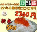 28年千葉県産コシヒカリ 白米 5kg【送料無料※一部地域を除く】