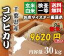 新米29年千葉コシヒカリ玄米30kg【精米無料】【玄米30kg精米27kg】【送料無料※一部地域を除く】