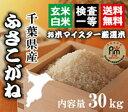 新米28年千葉ふさこがね玄米30kg【精米無料】【玄米30kg精米27kg】【送料無料※一部地域を除く】