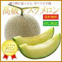 【あす楽対応】ご進物用 高級マスクメロン 1玉 約1.3〜1...