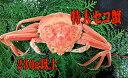 [冷凍][お買い得品]香住のセイコガニ 特大サイズ1匹(230g)(親ガニ・セコガニ・コッペガニ・メスガニ)(せこがに・こっぺがに・めすがに)[冷凍せこかに1匹...