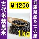 紫黒米1kg(品種:ゆかりの舞)黒米/黒紫米/玄米/業務用/古代米/しこくまい/兵庫県たつの市産/アントシアニン/雑穀/国産